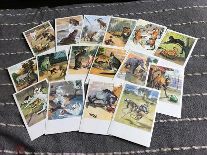Игольница, набор открыток новосибирский зоопарк