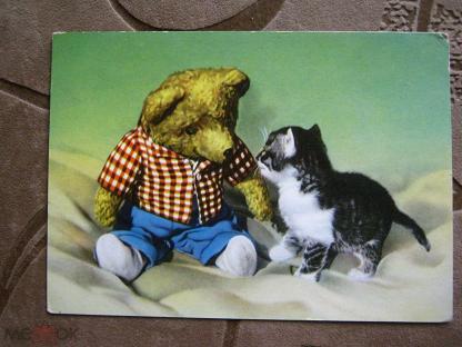 День рождения, открытки котята гдр