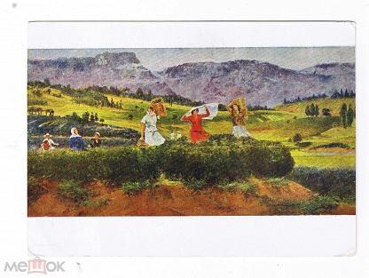 Картинки по запросу расцветай советская грузия фото
