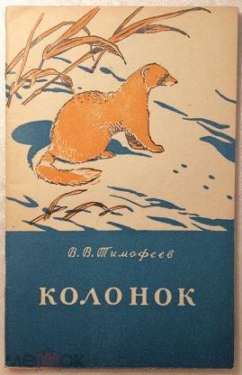 Тимофеев В.В. Колонок.