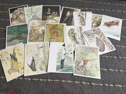Для девочки, наборы открыток ссср фауна