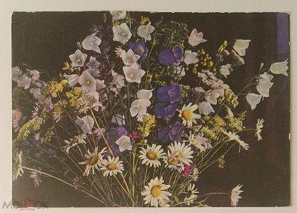 Открытка пасха, открытка полевые цветы 1954 года